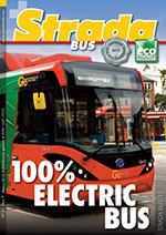Bus #0031-pt