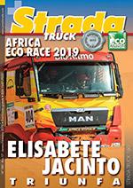 Truck #0160-pt
